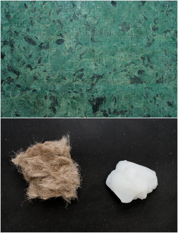 materia prima materia ecológico nanocelulosa
