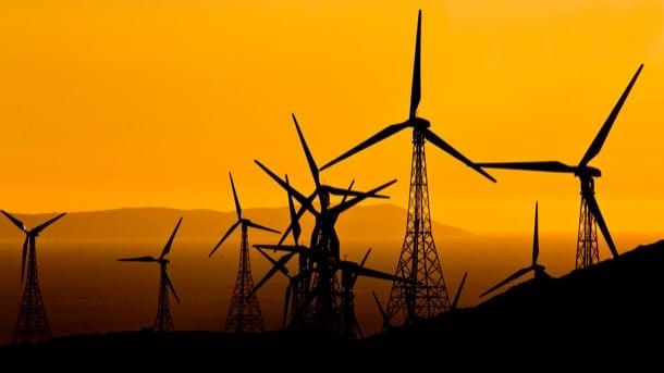 turbinas eólicas campo gibraltar
