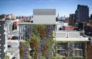 Fachada vegetal en un edificio de apartamentos de NY