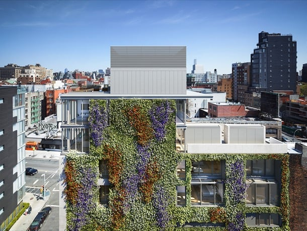 152 Elizabeth Street NY fachada vegetal