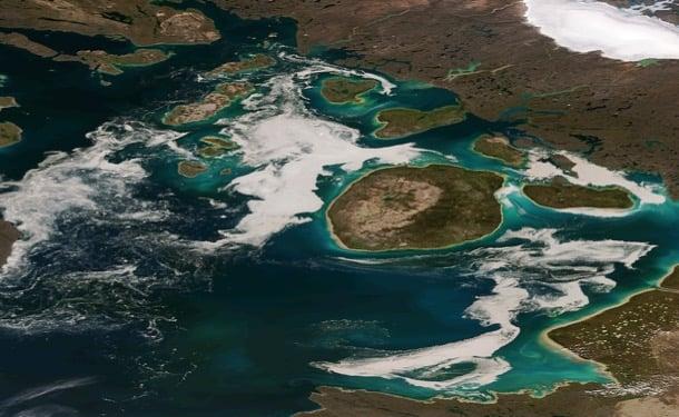 emisiones de carbono y fitoplancton