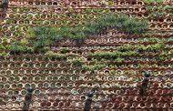 Eco.bin: muro ajardinado con piezas cerámicas