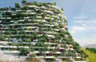 Mountain Forest Hotel: más arquitectura con árboles de SBA