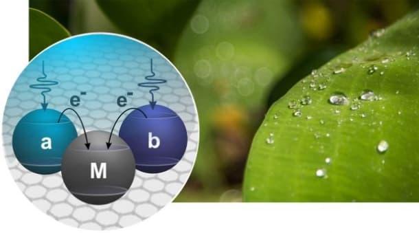 celda fotovoltaica cuántica esquema