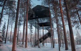 Habitación diseñada por Snøhetta para Treehotel