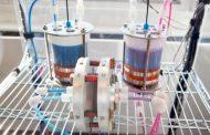 Batería de flujo creada en Harvard. De larga vida, y barata