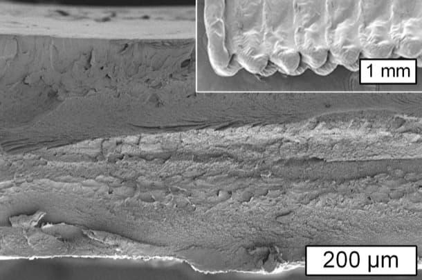 seccion-objeto-producido-por-impresion-con-celulosa