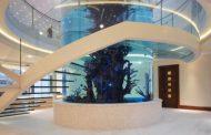 Escalera helicoidal con peldaños de vidrio en voladizo