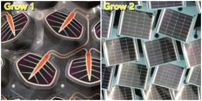 prototipos de hiedra fotovoltaica Grow1 y Grow2