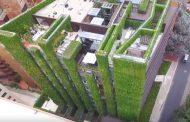Santalaia: inmenso jardín vertical en Bogotá