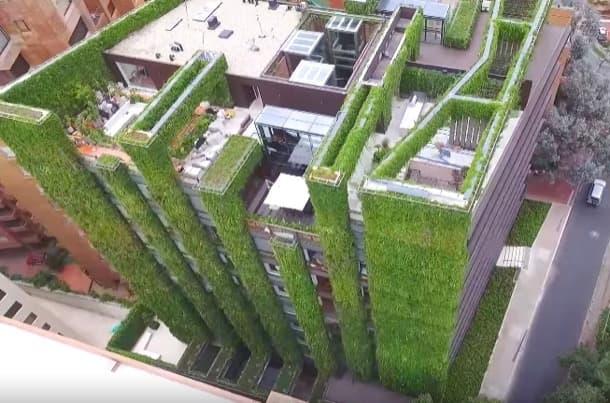 jardín vertical Santalaia Bogota Colombia