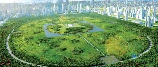 China Park: la ciudad verde de Gu Wenda